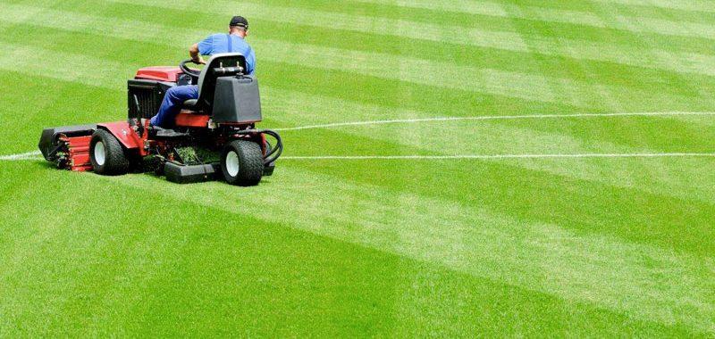 Grama Cuidados com gramado de campo de Futebol